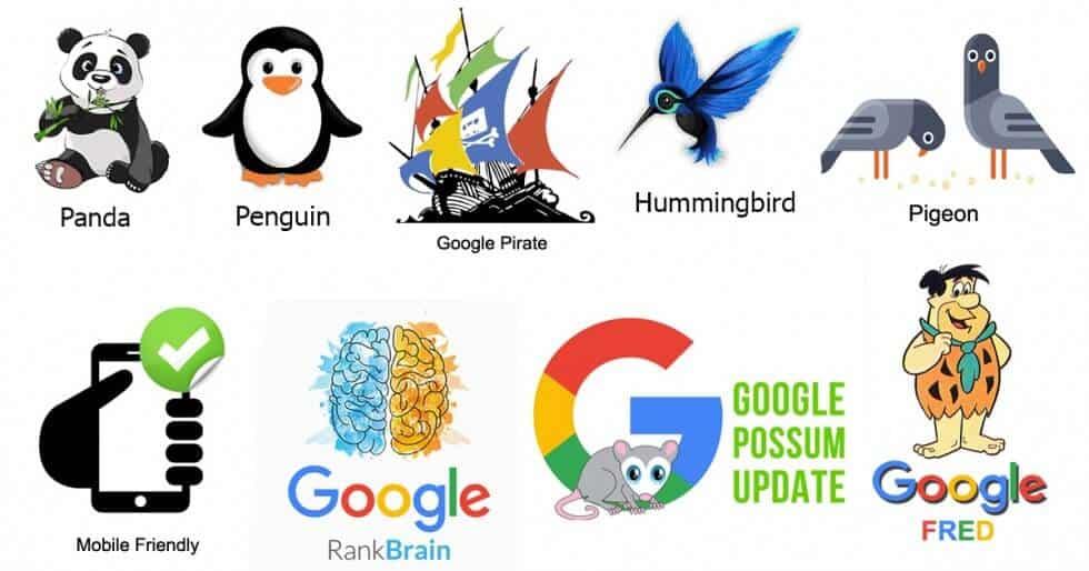 Các thuật toán phổ biến về vi phạm luật của Google
